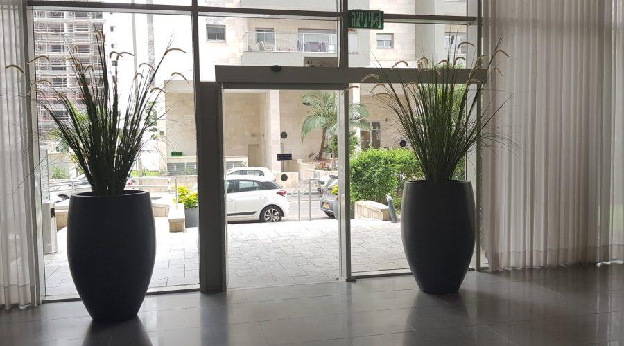 תמונה דלת אוטומטית ALL GLASS ביוני נתניהו 10 פתח תקווה